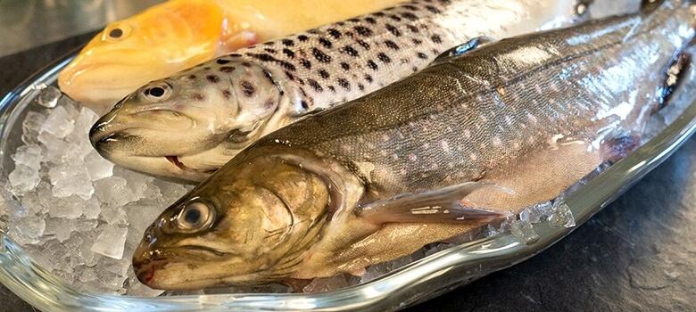 Frischer Fisch im Thermenhotel Pulverer Bad Kleinkirchheim